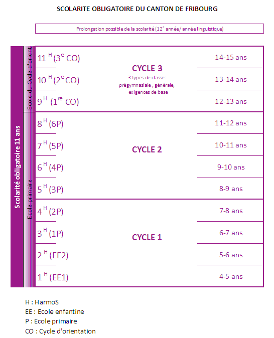 Cycle 1 = 4-8 ans; cycle 2 = 8-12 ans; cycle 3 = 12-15 ans