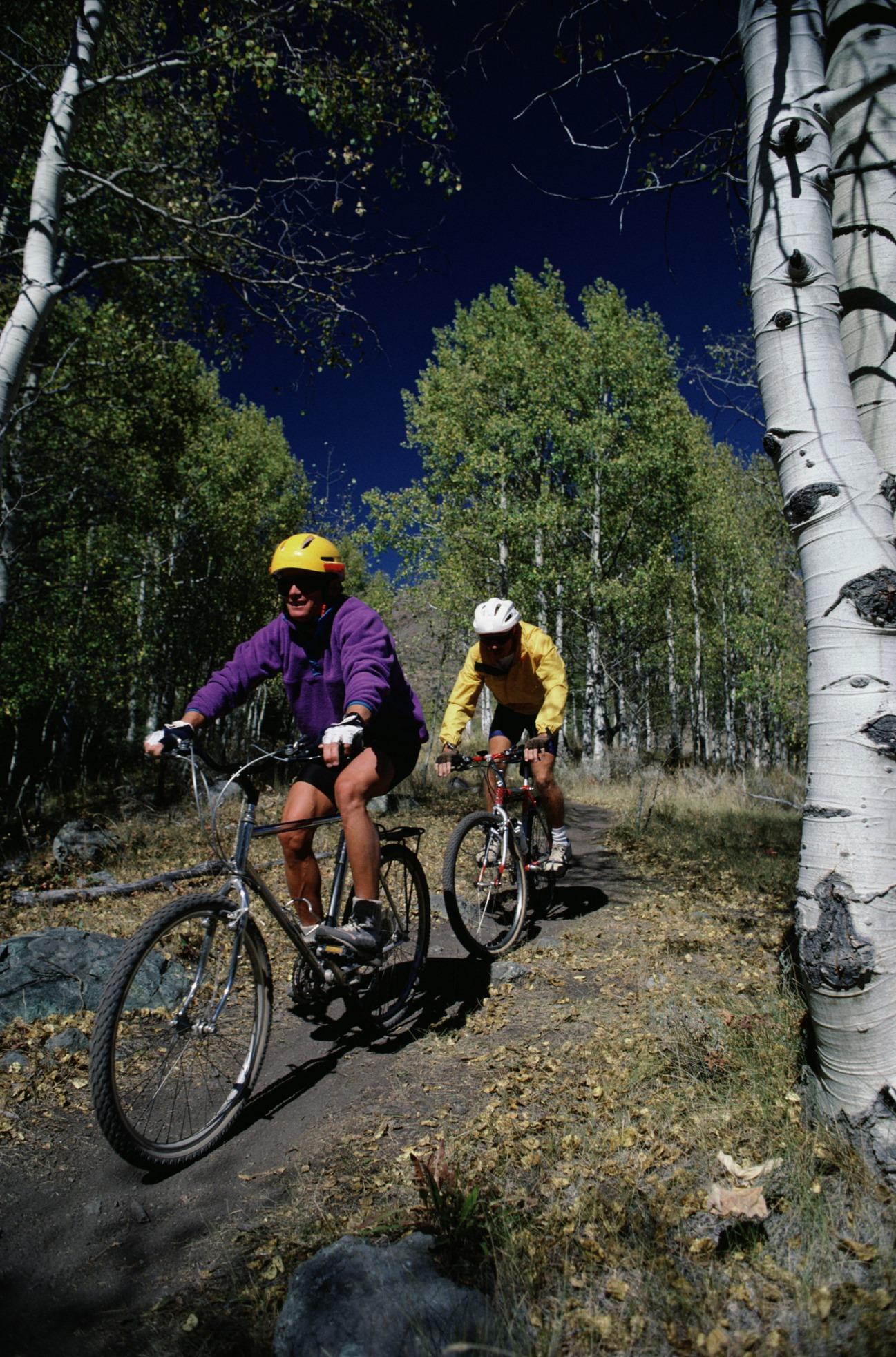 A vélo en forêt