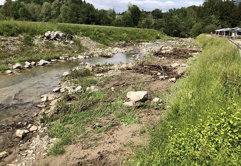 Die Albeuve im 2018, mit seinem Gewässerraum