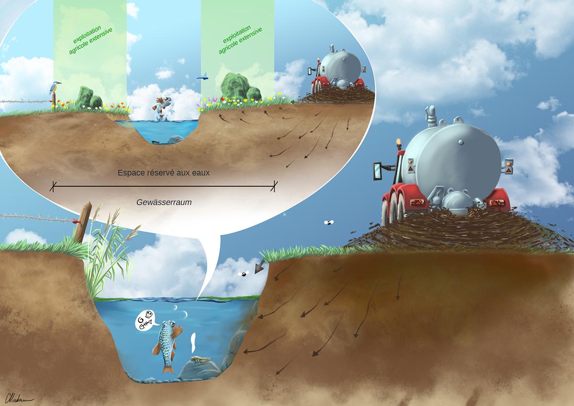 Espace réservé, protection des eaux et biodiversité
