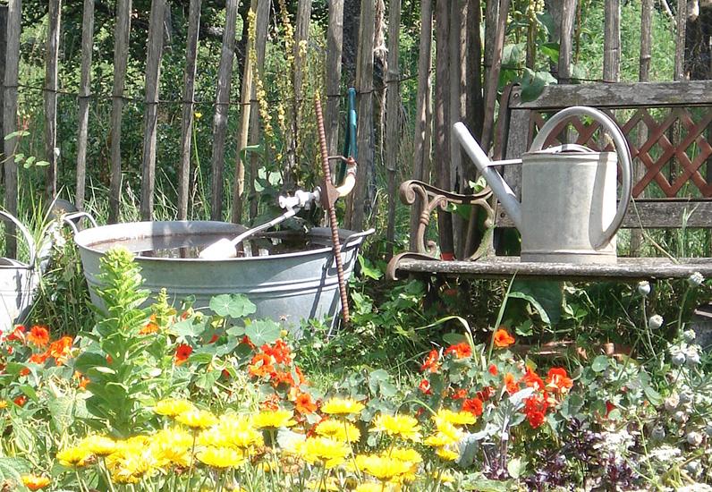 Ein Paar Einfache Massnahmen Um Seinen Garten Zu Geniessen Und Gleichzeitig Die Umwelt Zu Schonen Staat Freiburg