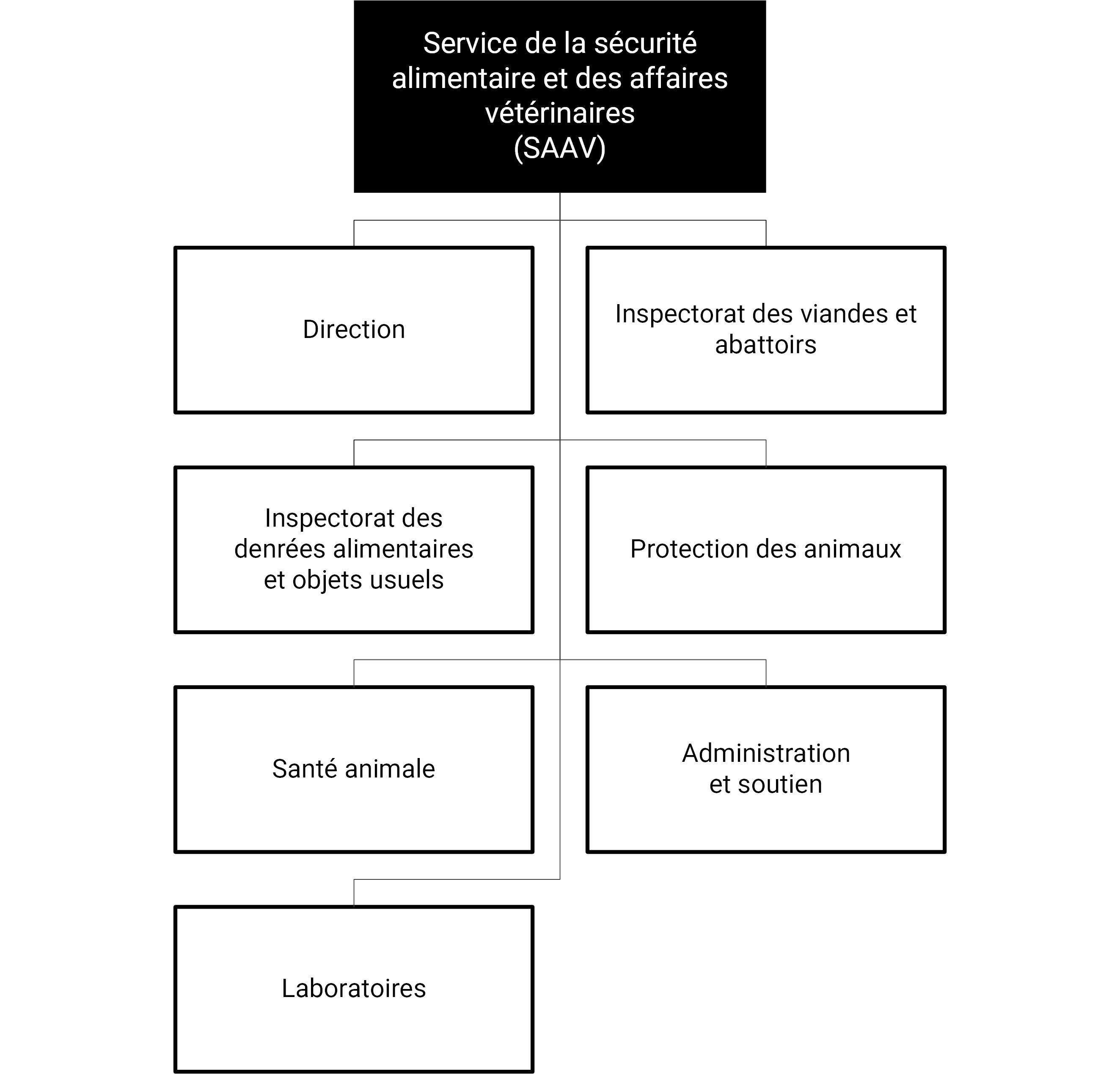 Organigramme du SAAV