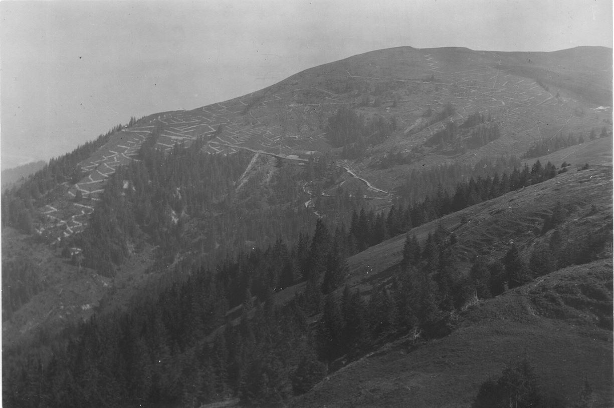 Schmutzes Schwyberg 1925 vor der Aufforstung