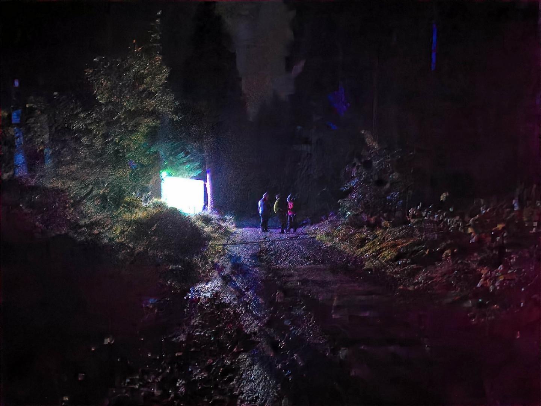 Lichtfalle im Wald