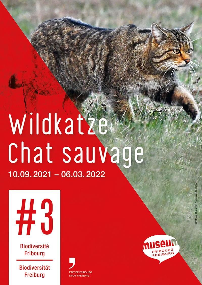 Wildkatze - #3 Biodiversität Freiburg (Plakat)