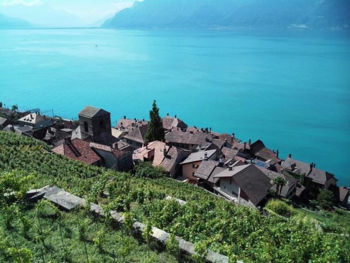 Vignes et village de Saint-Saphorin