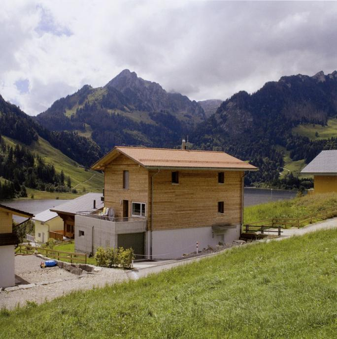 Yves André, Paysages occupés (2007), Schwarzsee
