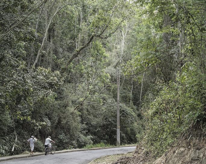 Thomas Brasey, Boaventura (2015), Estrada do Tingly