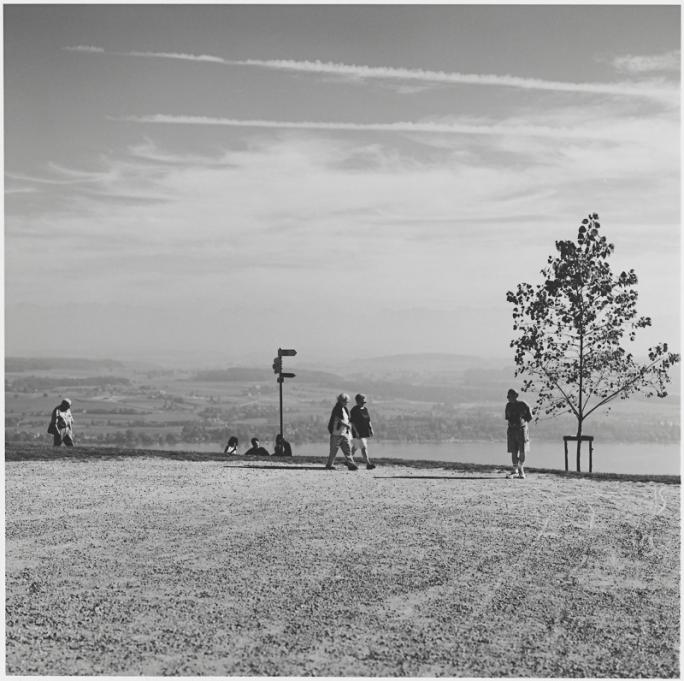 Marco Paoluzzo, Paysages fribourgeois (1997), Mont Vully