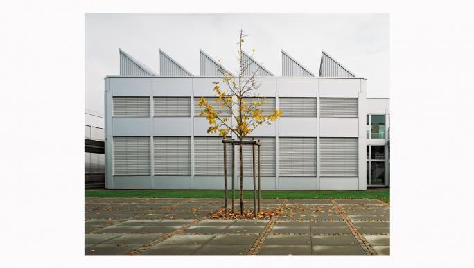 Nicolas Savary, L'âge critique (2005), Cycle d'orientation de la région de Morat