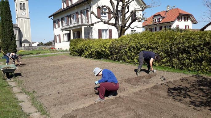 Des agent-e-s sympas jardinent