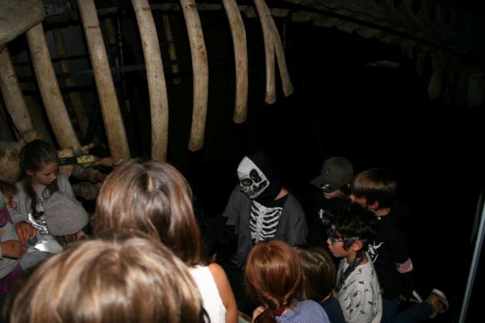 Nuit au Musée 8-10 ans -b
