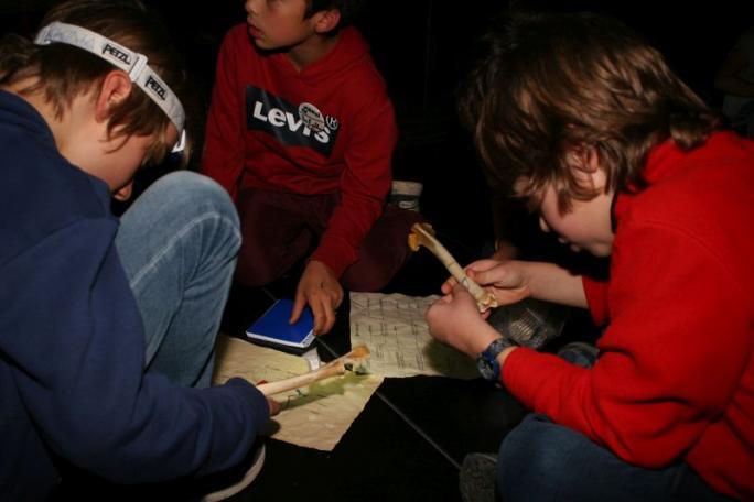 Nuit au Musée 8-10 ans -c