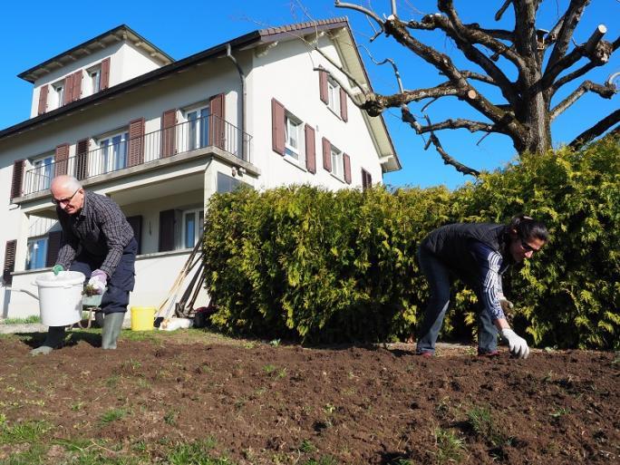 Jardiner à Schmitten