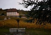 Domaine des Faverges en automne