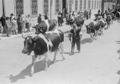 450e anniversaire de l'entrée de Fribourg dans la Confédération. Exposition Au lait, olé. BCU, Fonds Macherel