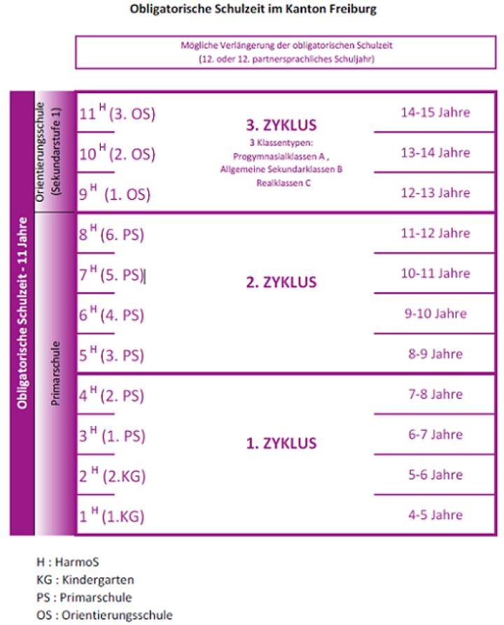 Zyklus 1 = 4-8 Jahre; Zyklus 2 = 8-12 Jahre; Zyklus 3 = 12-15 Jahre
