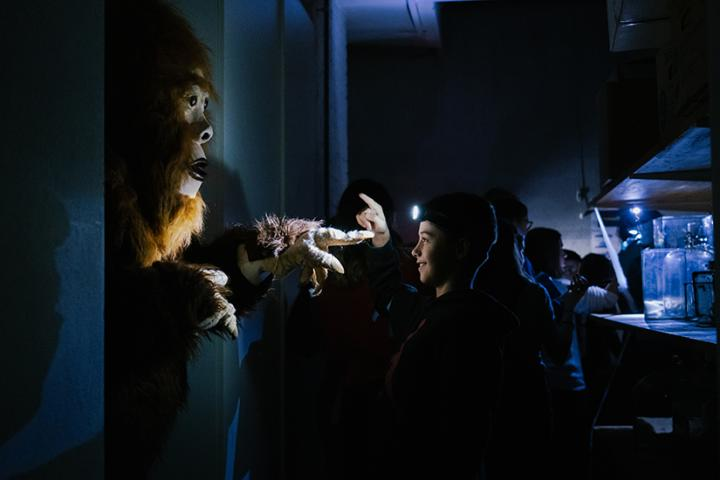 Nacht im Museum im NHMF, 2020
