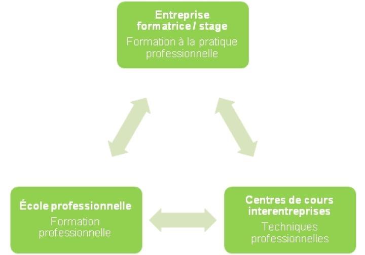 Schéma des trois lieux de formation