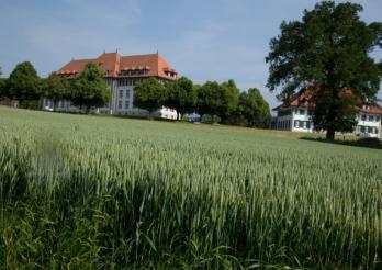 Photo du site de Grangeneuve