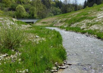 Renaturierung der Gewässer