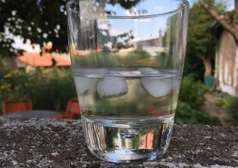 Plan cantonal alcool - Kantonaler Alkoholaktionsplan