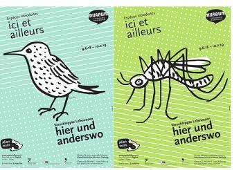 Ausstellung hier und anderswo - Naturhistorisches Museum Freiburg