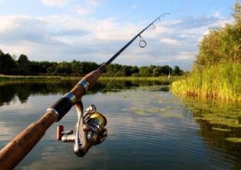 Fischerrute