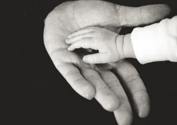 main enfant et adulte