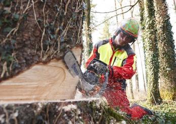 Forstpraktiker-in EBA