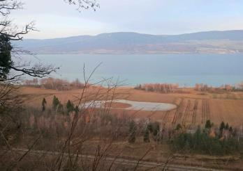 La réserve naturelle du lac de Neuchâtel vue de Châbles