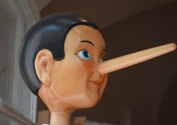 image du cours mensonges et manipulation