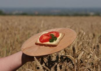 Promotion de l'agriculture