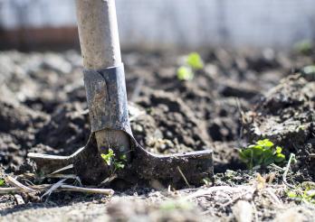 Protection du sol