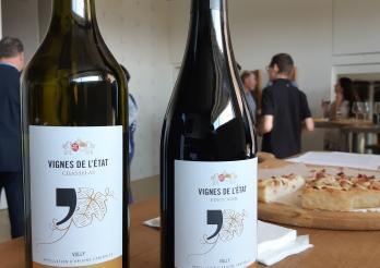 Pinot noir et chasselas 2017 de l'Etat de Fribourg, vinifiés par le Cru de l'Hôpital
