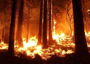 Grossbrände