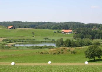 Moorlandschaft Lac de Lussy