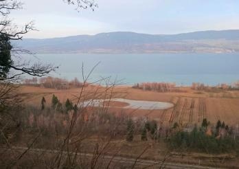 Les réserves naturelles de la rive sud du lac de Neuchâtel