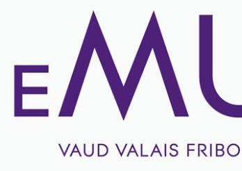 logo HEMU