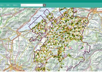 GIS-Daten zur Geologie des Kantons für die Online-Karten