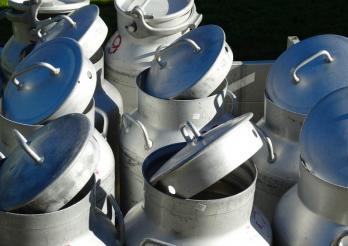 Photo de plusieurs boilles à lait