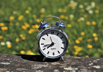Wecker auf sommerlichen Blumenfeld