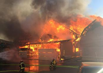 L'incendie de juin 2018 à la scierie Despond était vraisemblablement intentionnel