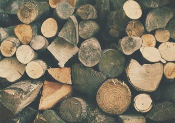Du bois local, une évidence naturelle !