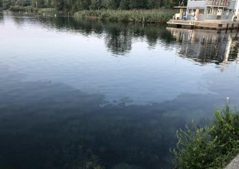 Pollution dans le lac de Neuchâtel à Cheyres