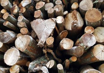 Grumes de bois de chauffage