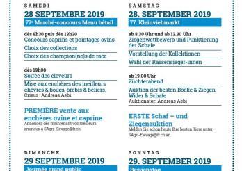Programme / Programm
