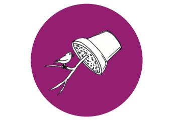 Futterstelle für Vögel