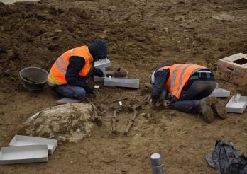 image d'une fouille d'urgence du service archéologique