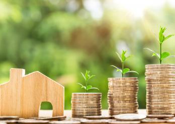 maisonnette en bois à côté de piles de pièces de monnaie et feuilles vertes